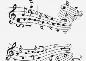 نیما قهرمانی- آموزش موسیقی ایرانی